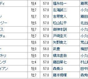 【JBCスプリント 2019】血統最終予想・枠順/人気は?藤田菜七子初G1勝利なるか!!