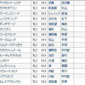 【阪神ジュベナイルフィリーズ2019】血統・調教全頭診断