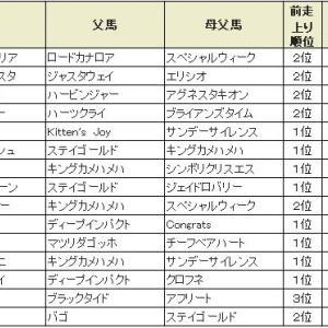 【ホープフルステークス 2019】血統展望・出走予定馬/予想オッズ、コントレイル1強なのか??