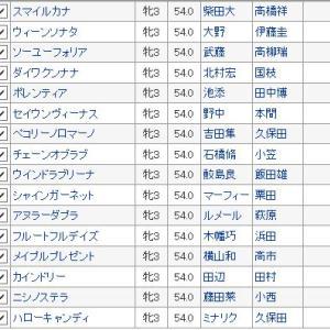 〔フェアリーステークス 2020〕血統予想・枠順確定、桜花賞戦線に名乗りをあげるのは?