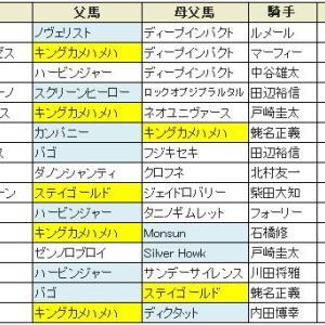 【京成杯 2020】血統展望・出走馬確定/予想オッズ、春のクラシックに乗れるのは?