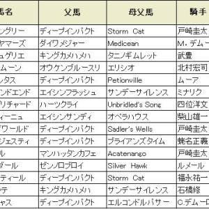 〔共同通信杯 2020〕血統展望・出走予定馬/予想オッズ、3強となるかマイラプソディ登場!!