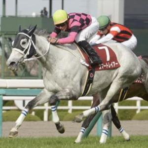 [阪神牝馬ステークス2020]予想オッズ・出走予定馬とデータ予想!注目は前走3勝クラスの馬!