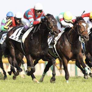 [日本ダービー2020]予想オッズ・出走予定馬とデータ予想!不安は鞍上?コントレイル。ダービー1番人気の重圧に耐えられるか。