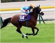 【安田記念 2020】血統最終予想・枠順確定、アーモンドアイの8冠を阻める馬は?