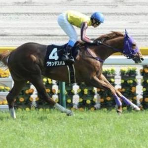 [七夕賞2020]予想オッズ・出走予定馬とデータ予想!穴はヒンドゥタイムズとオセアグレイト!