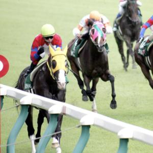 [アイビスサマーダッシュ2020]データ予想!出走予定馬から優位性のある馬を導き出しますpart1!