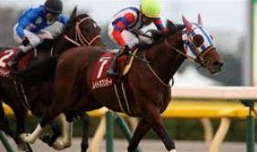 【アルゼンチン共和国杯 2020】血統予想・出走予定馬、有馬記念へ大混戦伝統ハンデ戦!!