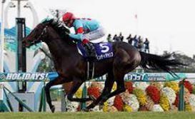 【マイルチャンピオンシップ2020〕血統予想・出走予定馬/予想オッズ、グランアレグリアに3歳馬が挑む!!