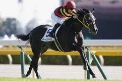 【シンザン記念 2021】血統予想展望、出走予定馬/予想オッズ、今年の桜花賞馬はククナ?