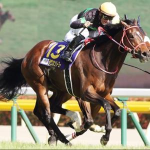 〔京都記念 2021〕血統最終予想・芝のレースは牝馬!!ラヴズオンリーユー勝負!