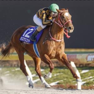 【フェブラリーステークス 2021】レース展望・出走予定馬/予想オッズ、大混戦ダートの主役に躍り出るのは?