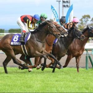 【高松宮記念 2021】血統展望・出走予定馬/予想オッズ、ローテとラップからの検証