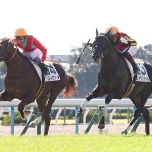 【毎日杯 2021】血統最終予想、皐月賞への最終切符はこの馬!!