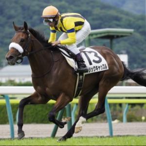 〔阪神牝馬ステークス 2021〕血統最終予想・枠順確定、3連単買い目発表