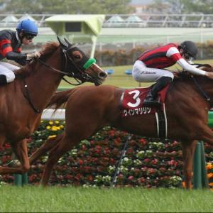 【フローラステークス2021】出走予定馬/予想オッズ、ソダシへの挑戦状、いざオークスへ!!