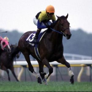【NHKマイルカップ2021】血統全頭診断・高速決着で血統から狙いたい馬は??