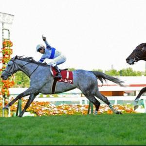【札幌記念2021】血統展望・出走予定/予想オッズ、新旧牝馬対決の行方は?
