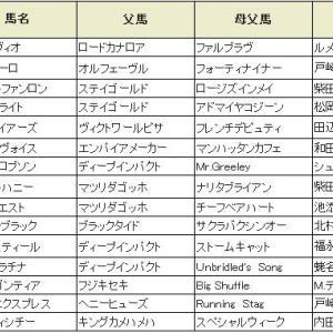 【スプリングステークス 2019】血統展望・出走確定馬/予想オッズ、皐月賞権利取りへ!!