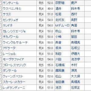 【マーメイドステークス 2019】血統予想・枠順確定、当たれば大儲け!!・波乱間違いなし!買い目発表