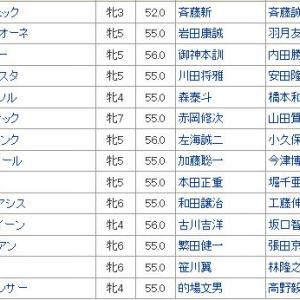 【スパーキングレディーカップ2019】血統最終予想・中央馬上位独占か、地方馬巻き返しに期待!!