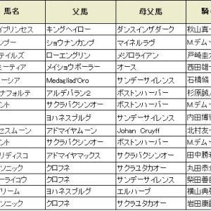【アイビスサマーダッシュ2019】血統展望・出走予定馬/予想オッズ、新潟名物快速王決定戦!!