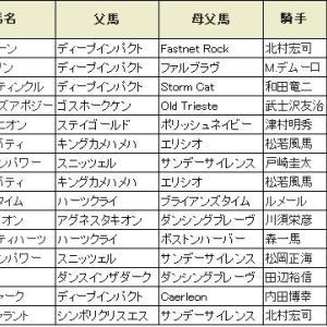 【関屋記念 2019】血統展望・出走想定/予想オッズ・真夏のマイル戦、狙いのポイントは??