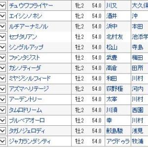 【小倉2歳ステークス 2019】血統最終予想・出走馬確定、3連単100万超え馬券も!!