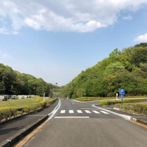 """今日は """"マロニエ通り"""" にて(^^)/"""