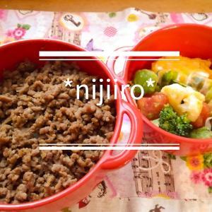女子高校生のお弁当~牛そぼろ丼とアボカドサラダ弁当