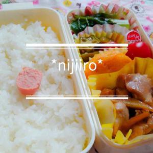 女子高校生のお弁当~鶏ごぼう炒め弁当