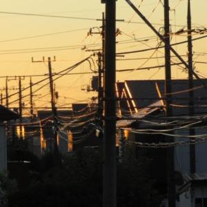 久しぶりに朝焼け空・・・ほんの一瞬でした(^◇^;)我が家はサザエさん状態??