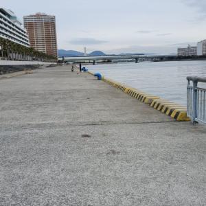 令和3年成人の日、極寒の南芦屋浜東側はガラガラ