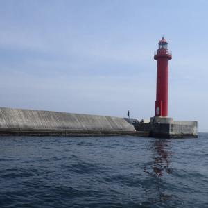桜マークAタイプ 沖堤防、船での釣りの必須アイテム
