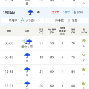 DeNA対広島の開幕戦、雨になりそう