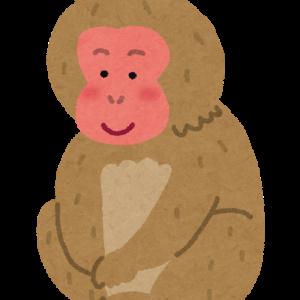 神奈川の猿の群れ、全頭駆除へ