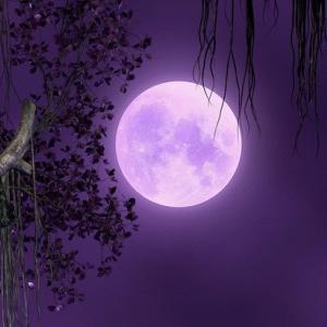蠍座・ウエサク満月 魂の浄化と心の断捨離