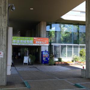国際多肉植物協会4月例会に参加いたしました!\(^o^)/