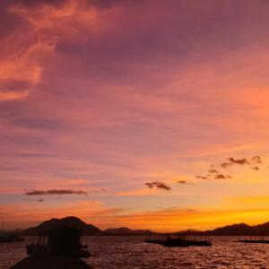しまなみ海道 大三島から見る朝焼け