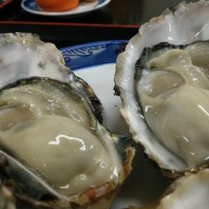 大三島くろしお 牡蠣料理は、11月中旬から予定
