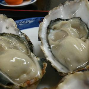 大三島で牡蠣が食べられるお店 くろしお