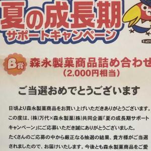 〜森永製菓当選品〜