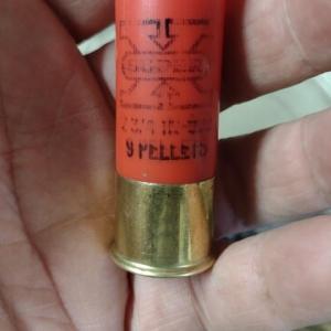 ??な散弾と面白そうな薬莢を拾いました