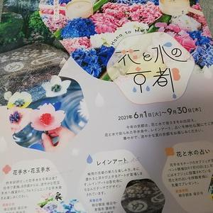 花と水の京都巡り1~東福寺
