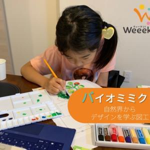 ウィーケン!de自宅体験学習_7歳7ヶ月&4歳5ヶ月