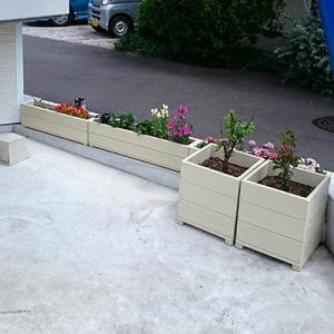 花壇を作ってみました!