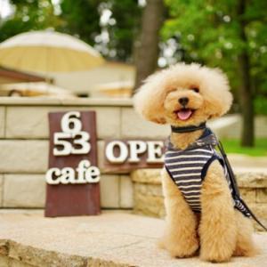暑い日は『 避暑地 』にある カフェへ♪
