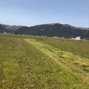 田んぼと山々