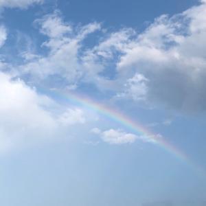 ぷーちゃんと虹