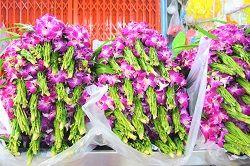 お花の香りに包まれて気分もリフレッシュ